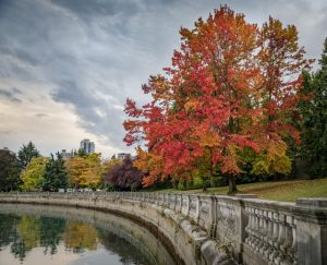 Stanley Park 10 best places to visit in canada discover fantastic vdiscovery arvinovoyage