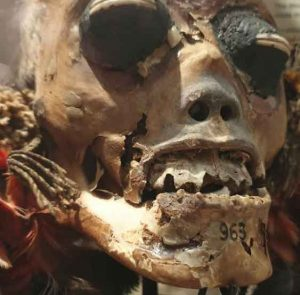 Shrunken head 32 weirdest museums in the world that are actually disturbing vdiscovery arvinovoyage