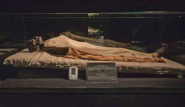 The Royal Mummy Room 32 weirdest museums in the world that are actually disturbing vdiscovery arvinovoyage