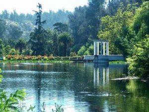 Botánico de Villa Bricherasio travelling in italy best places to visit you cant miss vdiscovery arvinovoyage