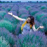 Lavender Fieldshere's a great way to mend your broken heart travel
