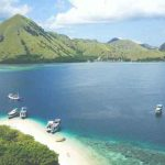 Rinca Island jurassic park project komodo island indonesia what you need to know vdiscovery arvinovoyage