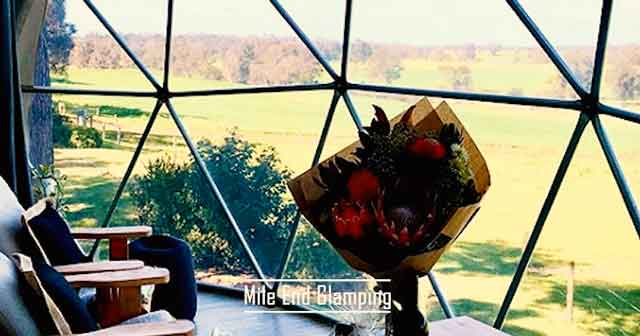 Mile End Glamping best glamping destinations in the australia luxury camping resorts vdiscovery arvinovoyage