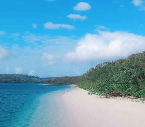 Peucang-Island---Banten-snorkeling-for-beginners-in-indonesia-top-31-destinations-that-will-blow-you-away-vdiscovery-arvinovoyage