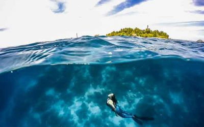 snorkeling-for-beginners-in-indonesia-top-31-destinations-that-will-blow-you-away-vdiscovery-arvinovoyage