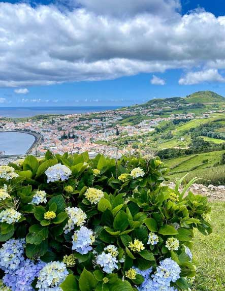 Horta-the-azores-europe's-hawaii-top-11-things-to-do-in-islands-of-adventure-arvinovoyage